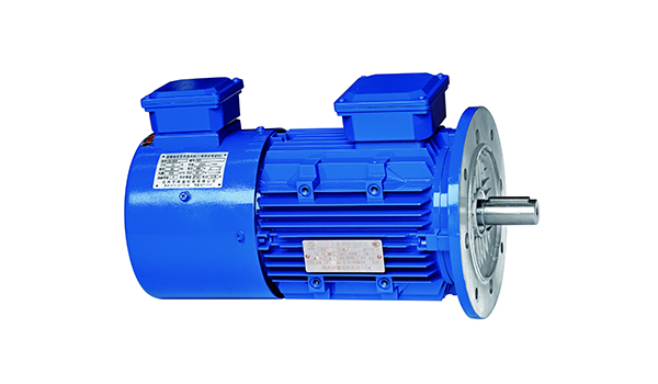 YVF2 Variable Frequency motor