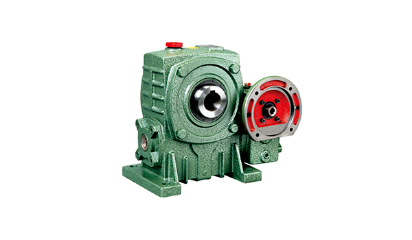 WPE Series Worm Gears Reducer